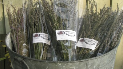 Bundles of lavender from the Ol'factory Soaps & Scents ready for sale. Photo: Sue Chmieleski