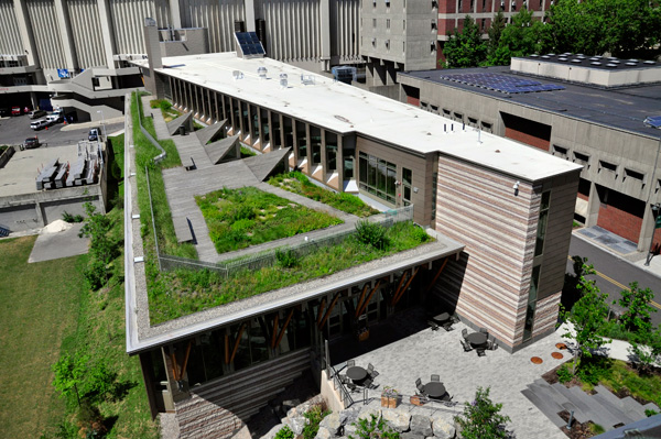Gateway Center green roof, courtesy Andropogon Associates