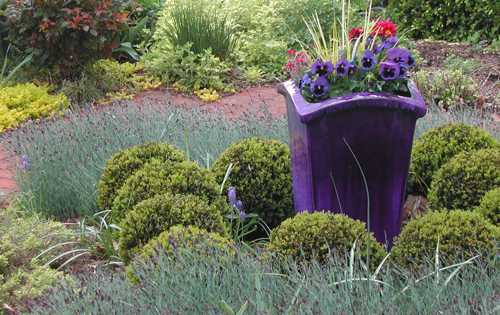 Use of a container as the focal point at the center of a cottage garden, Montgomery County, PA. Photo by Jean Westcott