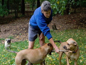Mary Hirshfeld with 3 of her 4 dogs