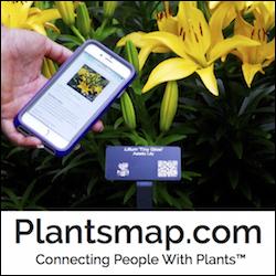 plantsmap3-17