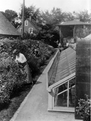 Isabelle Martin working in her cutting garden circa 1908. Courtesy University Archives, State University of New York at Buffalo